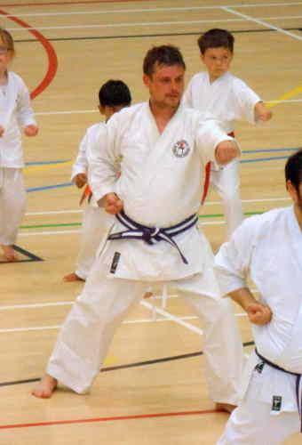 Steve Training