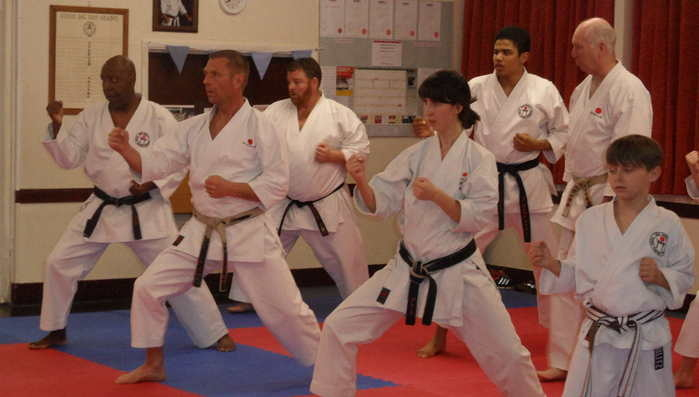 Lesson with Sensei Poynton March 2016