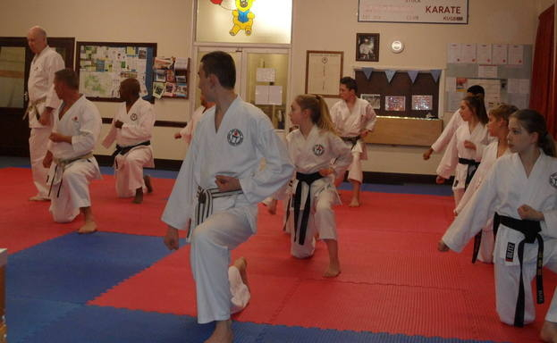 Lesson with Sensei Poynton March 2016 (3)