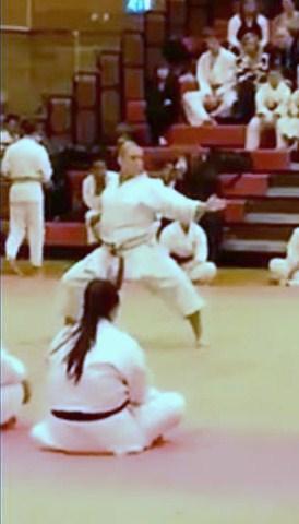 Lisa Shotokan Cup 2013