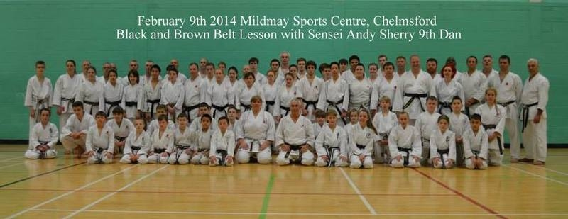 Sensei Sherry Feb 9th 2014 course