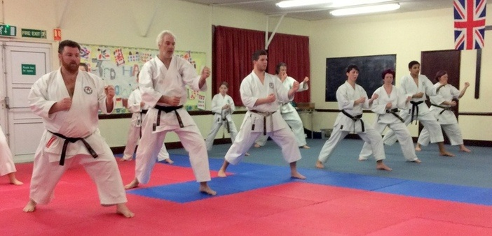 Lesson with Sensei Bob p8 12 March 2015