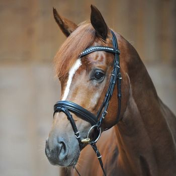 """Bridle """"Camillo"""" with crank noseband with flash in Black Leather (£95.00 Exc VAT & £114.00 Inc VAT) Product Code 190 08"""
