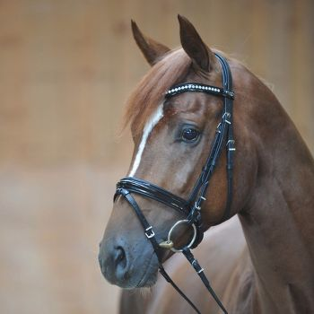 """Bridle with patent leather """"Reydok"""" with crank noseband with flash in black leather (£102.50 Exc VAT & £123.00 Inc VAT) Product Code 190 07"""