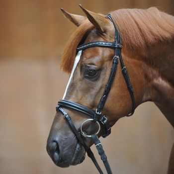 """Bridle """"Caprice"""" with crank noseband with flash in black leather (£70.83 Exc VAT & £85.00 Inc VAT) Product Code 190 31"""