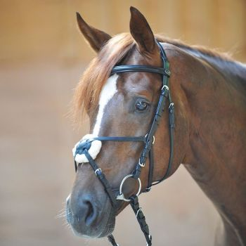 """Bridle """"Carlos""""with Mexican noseband and removable pad made from real lambswool (£55.00 Exc VAT & £66.00 Inc VAT) Product Code 190 22"""
