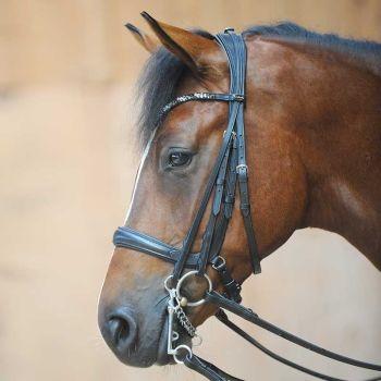 "Kavalkade ""Ivonne"" Weymouth Combi Bridle - Black Leather (£118.33 Exc VAT & £142.00 Inc VAT) Product Code 193 06"