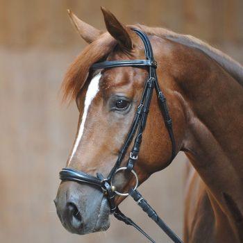 "Bridle ""Lina"" with drop noseband (£47.50 Exc VAT & £57.00 Inc VAT) Product Code 190 01"