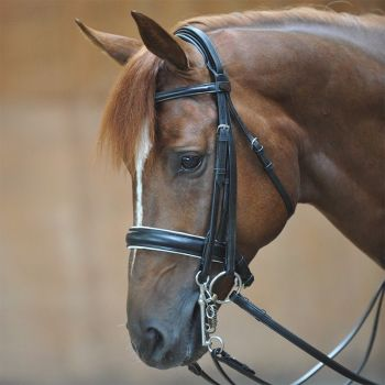 "Weymouth Bridle ""Dacira"" Double bridle with crank noseband with flash (£79.17 Exc VAT & £95.00 Inc VAT) Product Code 193 02"