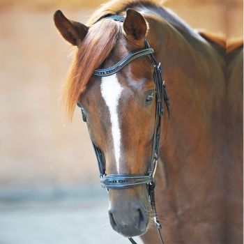 """Bridle """"Esther"""" with drop nose band (£78.33 Exc VAT & £94.00 Inc VAT) Product Code 190 19"""