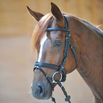 """Bridle """"Filip"""" padded crank nose band with flash (£78.33 Exc VAT & £94.00 Inc VAT) Product Code 190 25"""