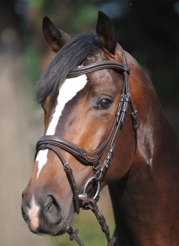 """Bridle """"Ivy"""" With English noseband with flash (£70.83 Exc VAT & £85.00 Inc VAT) Product Code 190 13"""