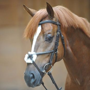 "Bridle ""Diandro"" with Mexican noseband (£63.33 Exc VAT & £76.00 Inc VAT) Product Code 190 16"