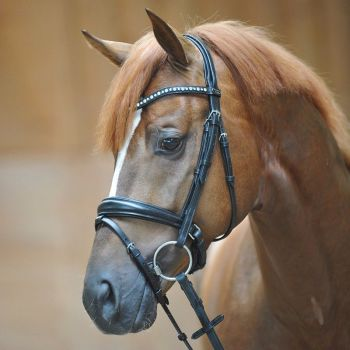 """Bridle """"Mia"""" with crank noseband with flash (£86.67 Exc VAT & £114.00 Inc VAT) Product Code 190 11"""