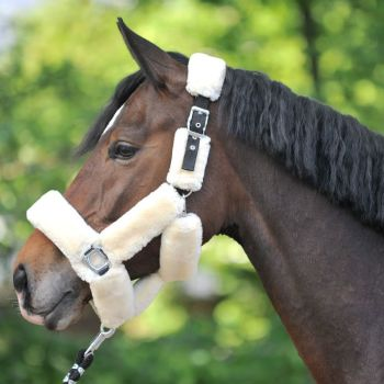 Travelling Headcollar (£31.67 Exc VAT & £38.00 Inc VAT) Product Code 290 17