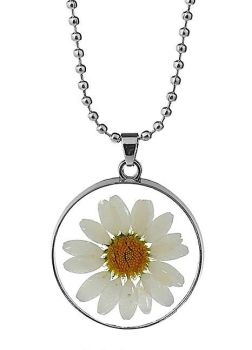 Real Flower Daisy Glass Pendant Necklace