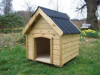 Large Dog Kennel<p><p><p><p>