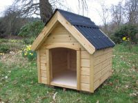 Medium Dog Kennel<p><p>