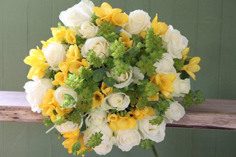 avalanche and yellow freesia