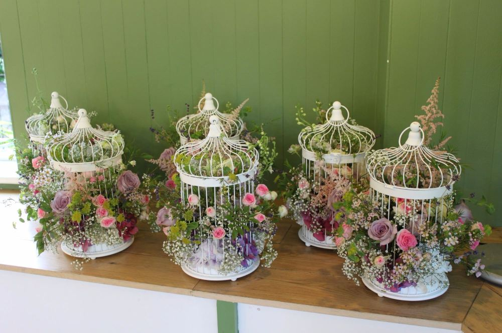 Bird cage arrangements