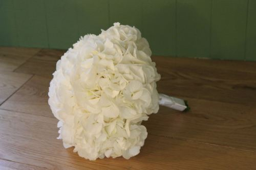 white hydrangea brides bouquet