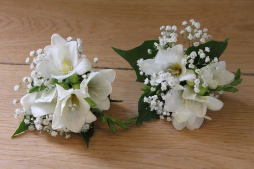 babies breath and freesia corsage