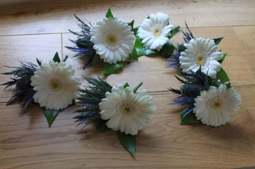 gerbera and eryngium corsage
