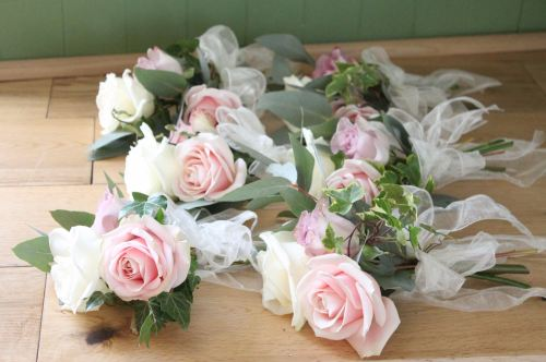 pink and ivory avalanche roses