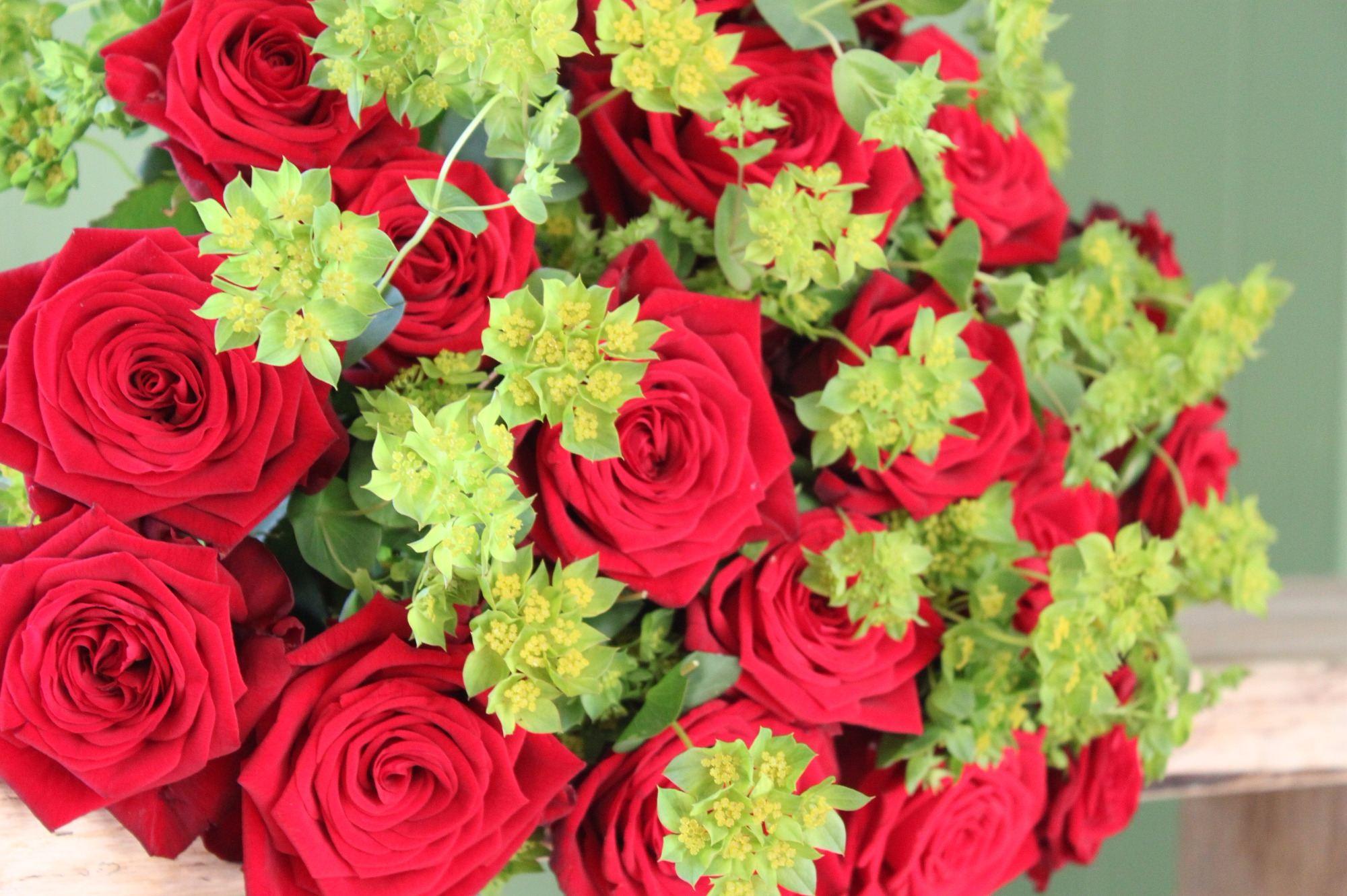 send red roses