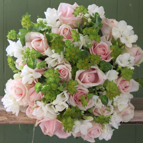 Sweet Avalanche Rose and White Freesia