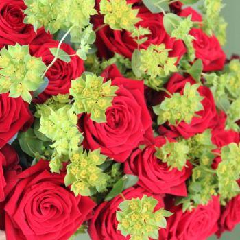 Red Naomi Rose and Bupleurum Valentine's Bouquet