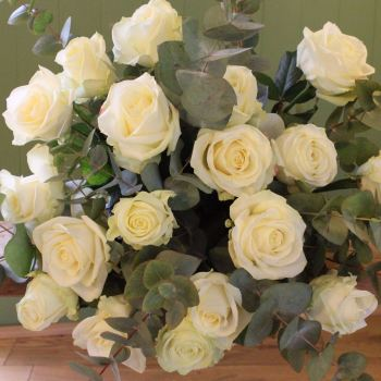 Ivory Avalanche Rose Valentine's Bouquet. Price from