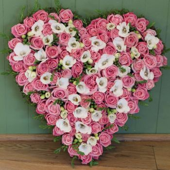 Pink Rose  and White Freesia Closed Heart