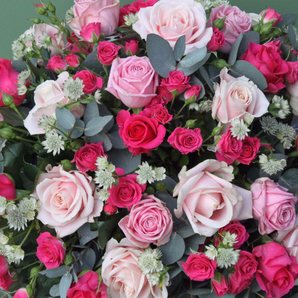 Pale and Cerise Pink Rose and astrantia Coffin Spray
