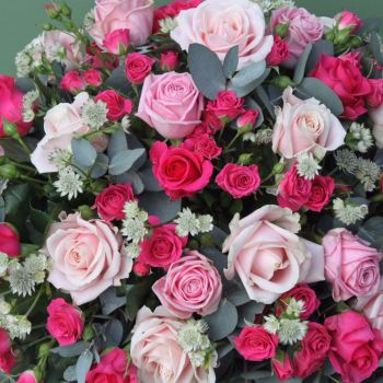 Shades of Pink Roses Coffin Spray