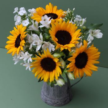 A Sunflower Jug