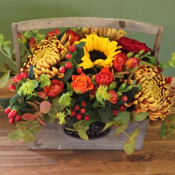 Autumn Trug. Price from