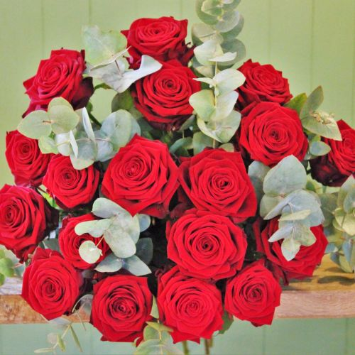 Red Naomi Roses Long stemmed