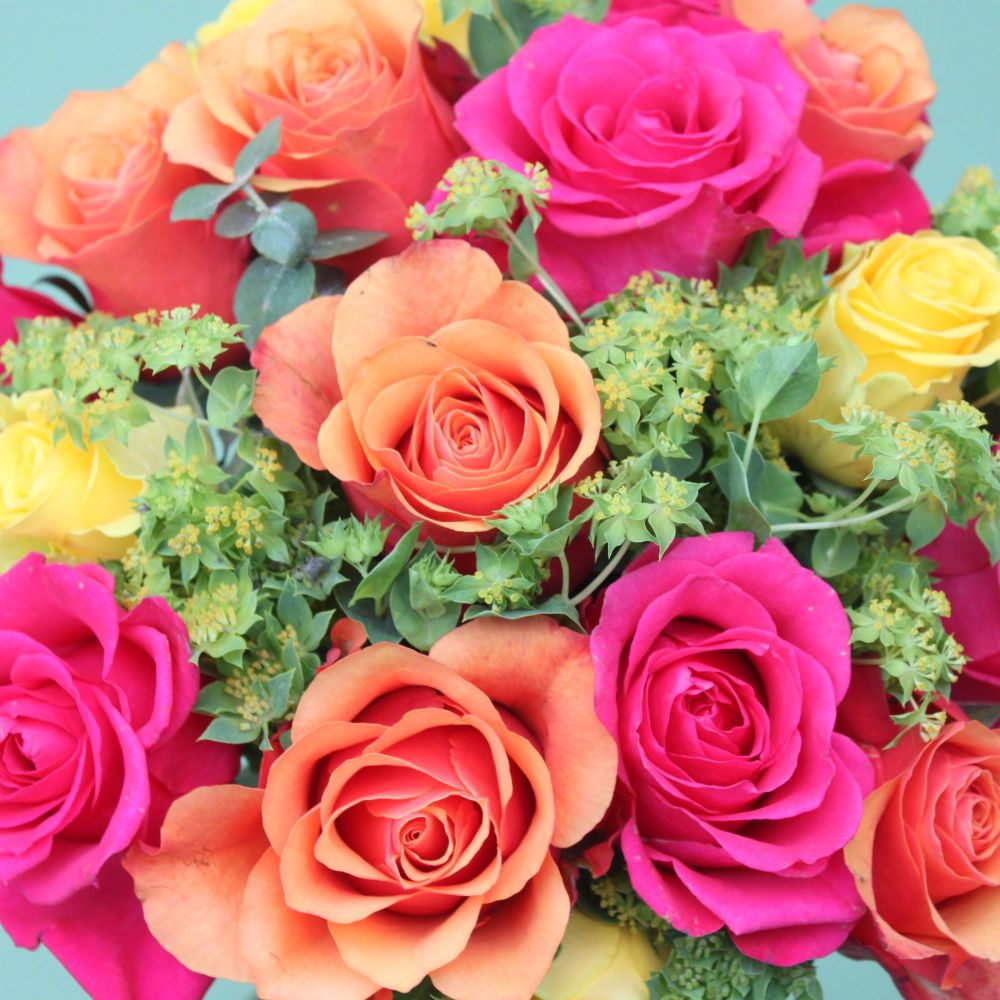 Vibrant Valentine's Day Rose Knot