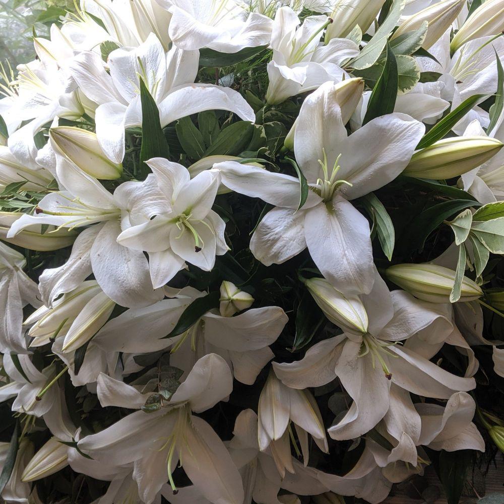 White Oriental Lily Coffin Spray