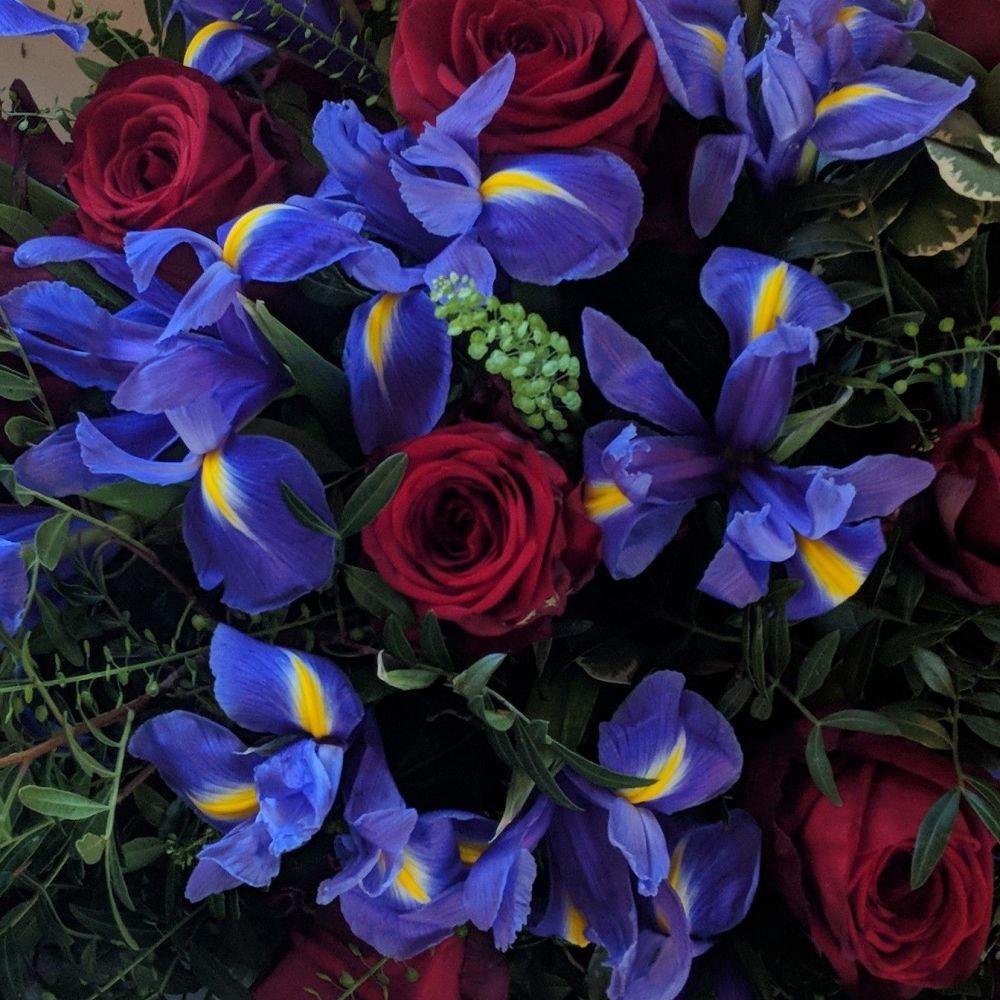 Red Rose & Purple Iris Coffin Spray