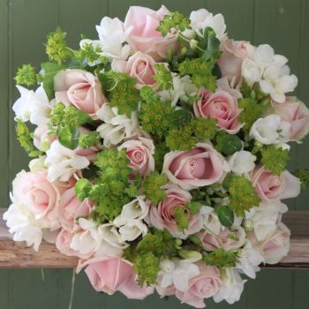 Pink Rose and White Freesia. Price from