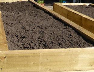 prepared veg plot