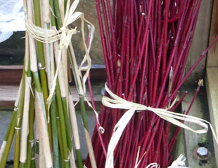 Cornus and Bamboo plant stakes