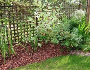 garden membrane