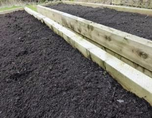 prepared veg plot