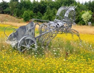 Chariot in wild flower meadow