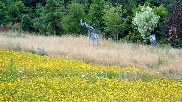 deer Sculpture in wildflower meadow