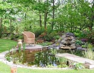 Restful pond with seating