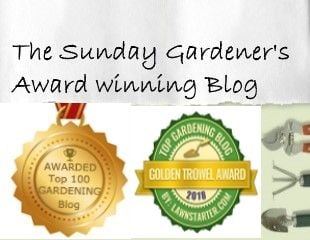 Award winning blogs